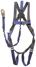 Where to rent SAFETY HARNESS in Ada OK